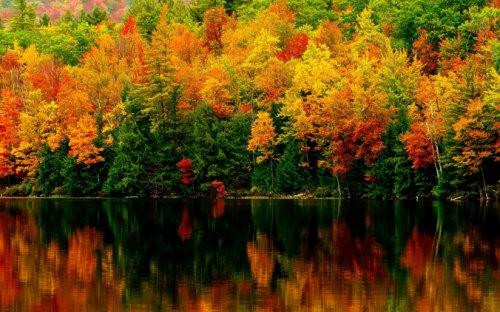new-hampshire-colors